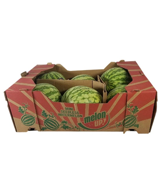 6 Watermelons in a box